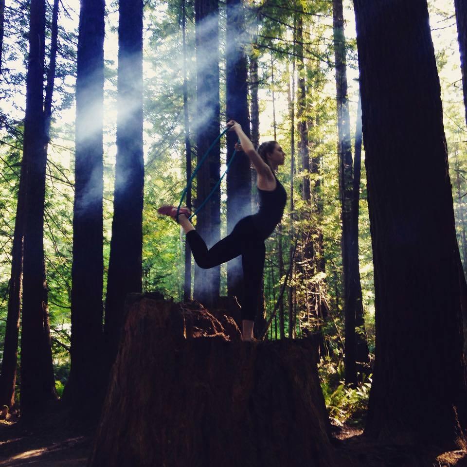 health benefit example tree